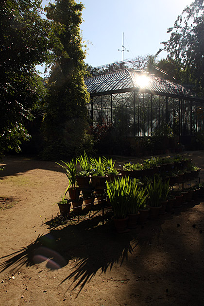 Green House Palermo