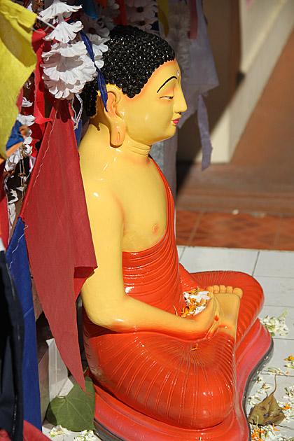 Buddha Kandy