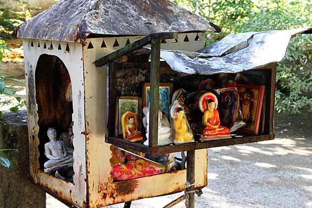 Buddha Shelter