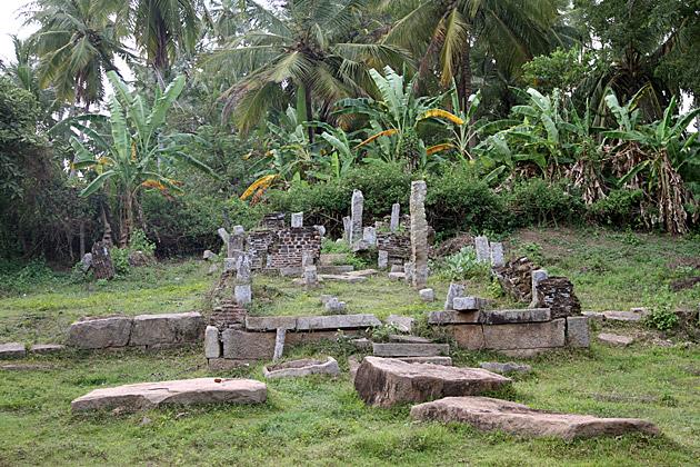Jungle-Ruins-Anuradhapura