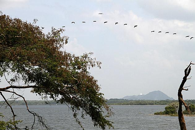 Sri Lanka Lakes