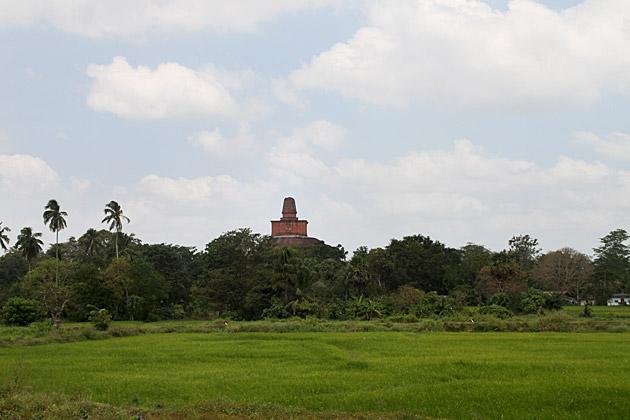 Sri Lankan Pyramid