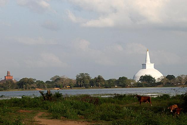 Anuradhapura-in-2012