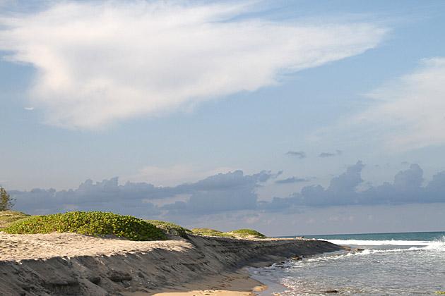Green Sand Banks