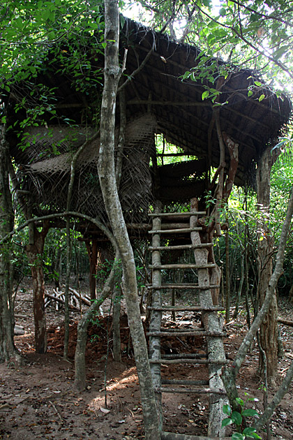 Jungle-Tree-House