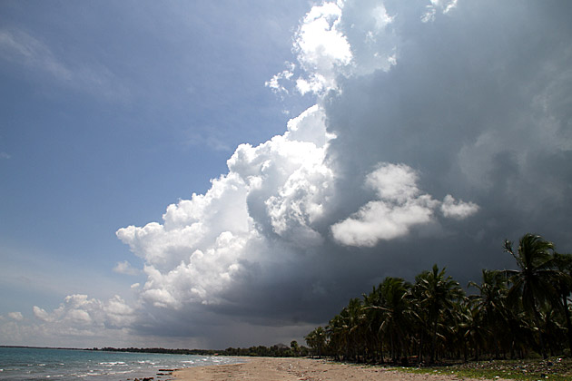 Darmatic Beach