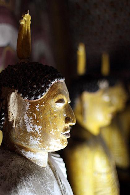 Best Buddha