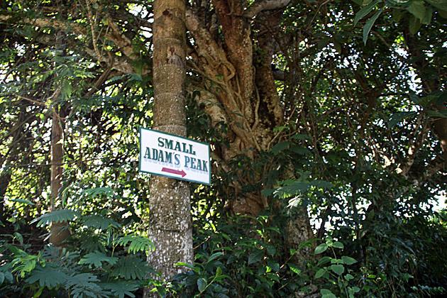 Small Adams Peak Sign