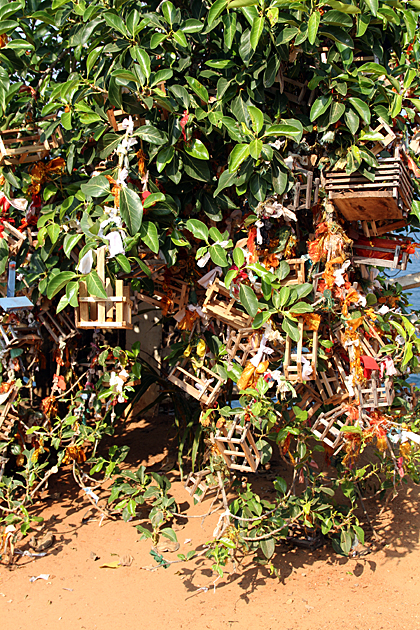 Hindu-Baby-Wish-Tree