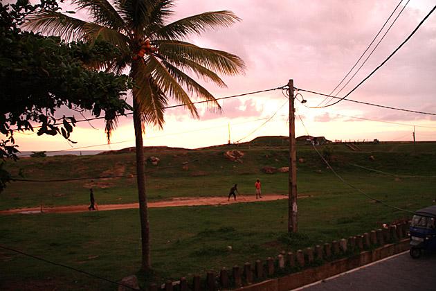 Sunset Cricket