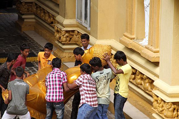 Buddha Transport