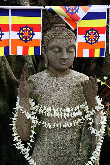 Buddhism Flag