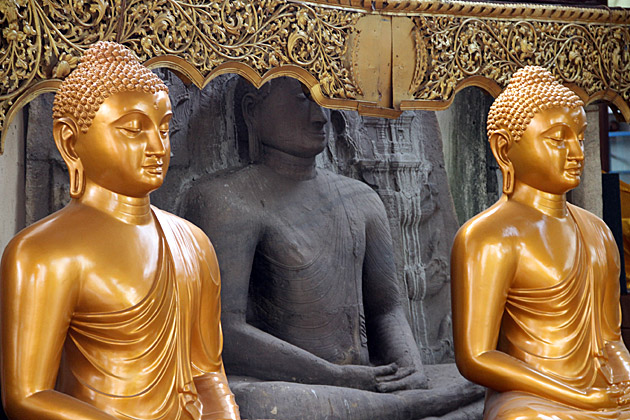 Meditating-Buddhas