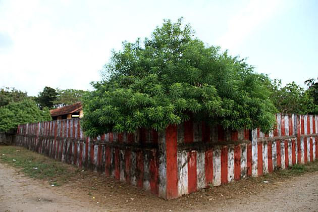 Kovil Corner