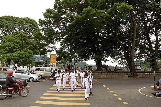 Kandy School Kids