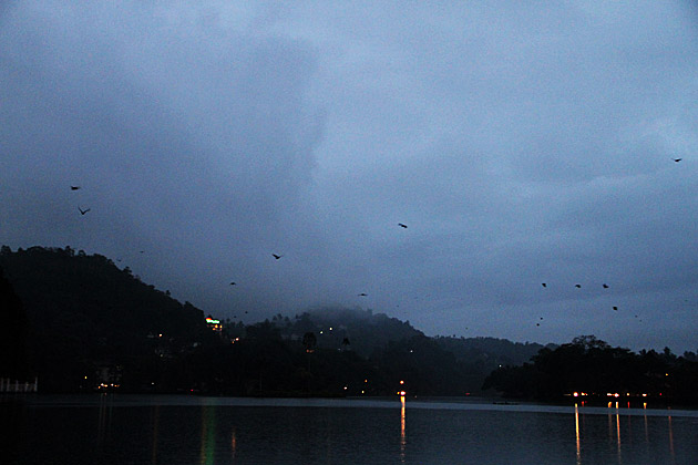 Magical Moment in Kandy