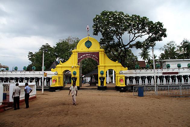Sri Lanka Thunder