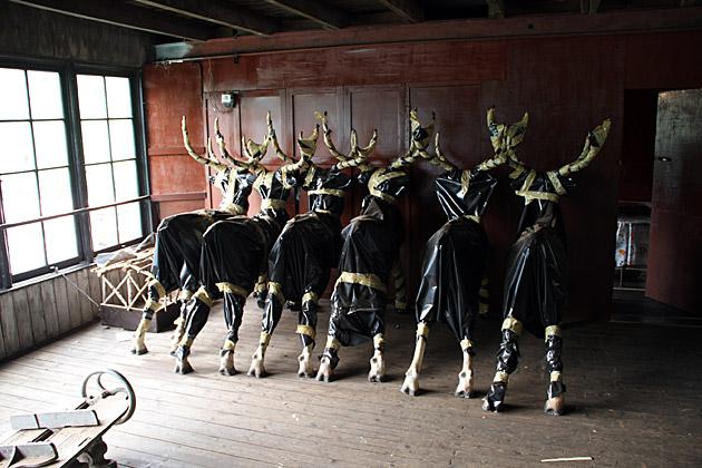 Macwoods Deer