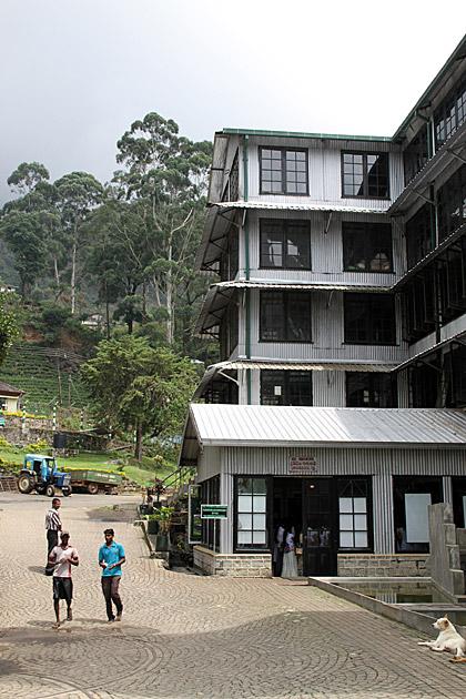 Tea Factory Sri Lanka