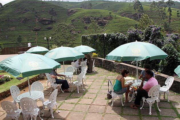 Tea Time in Sri Lanka