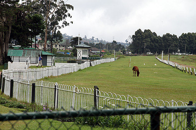 Horse-Track-Nuwara-Eliya