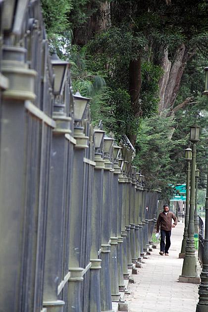 Walking-in-Nuwara-Eliya