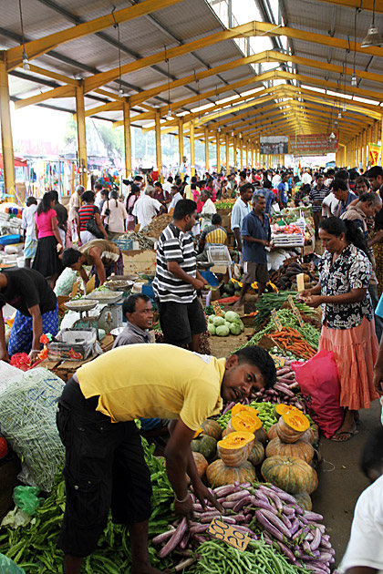 Fruit Market Colombo