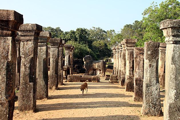 Polonnaruwa-Guide