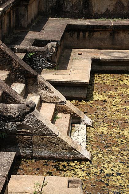 Citadel-Polonnaruwa-Pond