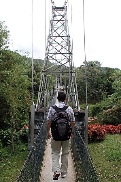 Botanical-Garden-Bridge