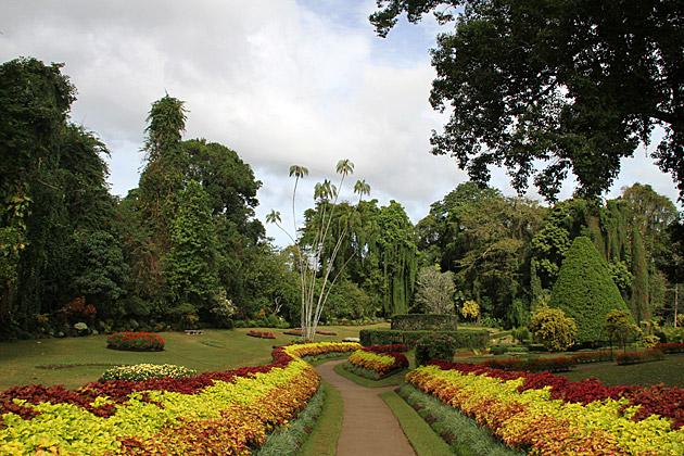 Botanical-Gardens-of-Peradeniya