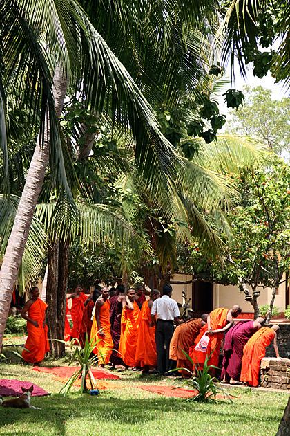 Monks-in-Anuradhapura