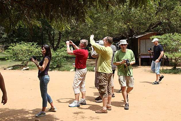 Tourists in Sri Lanka