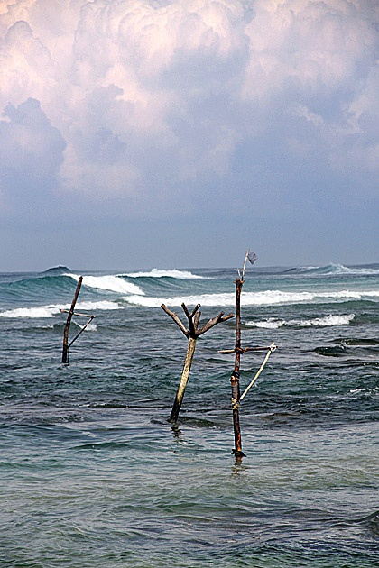 Lonely Stilts