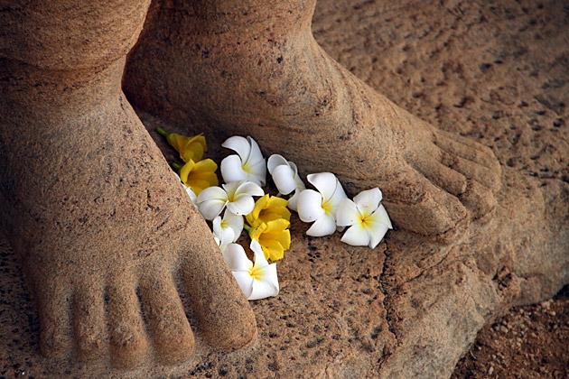 Flower Offerings Sri Lanka