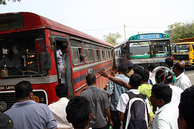 Sri Lankan Spectators