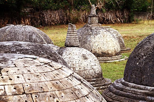 Jaffna-Dagoba-Field