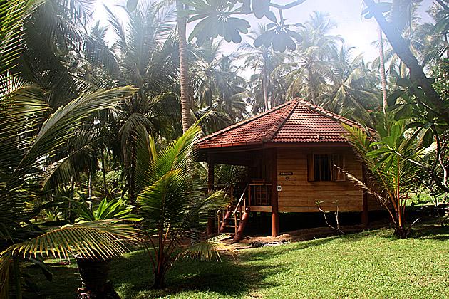 Paradise Beach Cabanas