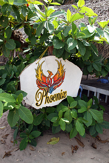 Pheonix-Beach-Back