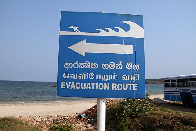 Run From Tsunami