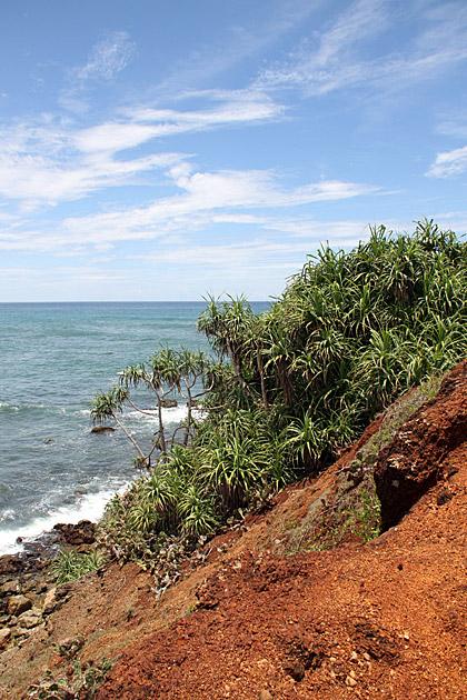 Contrast-Landscapes-Sri-Lanka