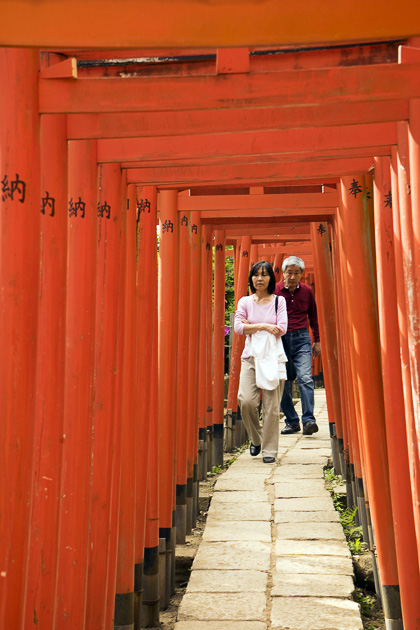 Bunkyo Azalea Festival At The Nezu Shrine