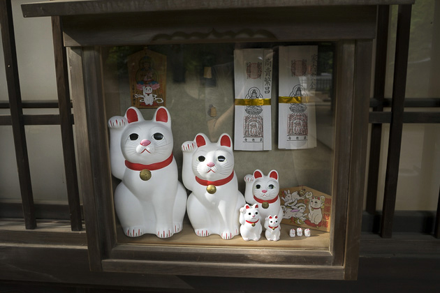 The Cat Temple In Tokyo