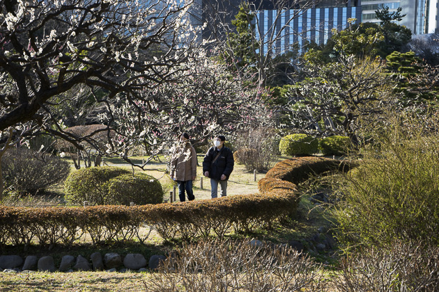 Hamarikyu Detached Palace Gardens