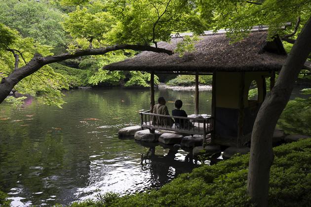Garden Tokyo. Kyuyasuda Teien Garden With Garden Tokyo. Autumn ...