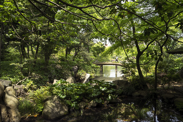 Komagome and the Rikugi-en Gardens