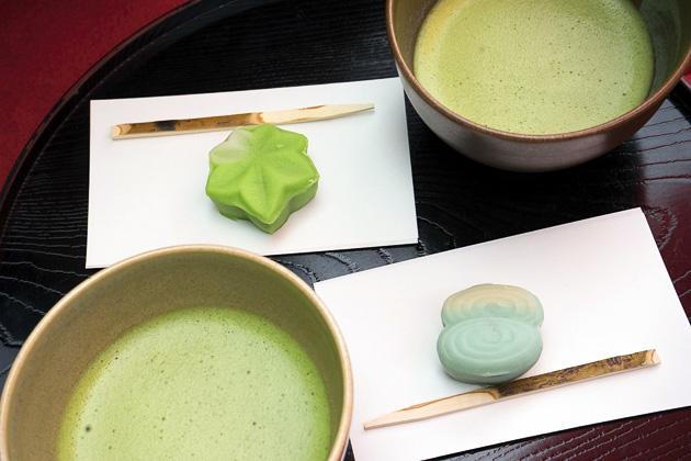 Komagome and the Rikugi-en Gardens