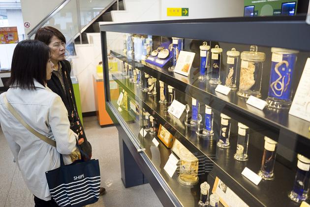 Parasitological Museum of Meguro