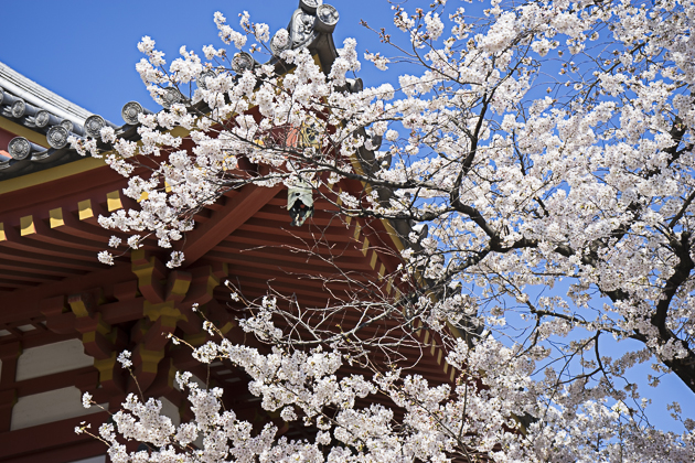 Ryūsen-ji  Meguro Fudo