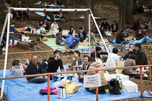 Inokashira Park in Kichijoji